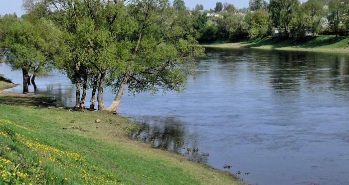 Чоловік лежав на березі річки з пораненим животом