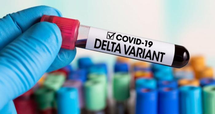В Україні зафіксували новий штам коронавірусу «Дельта»