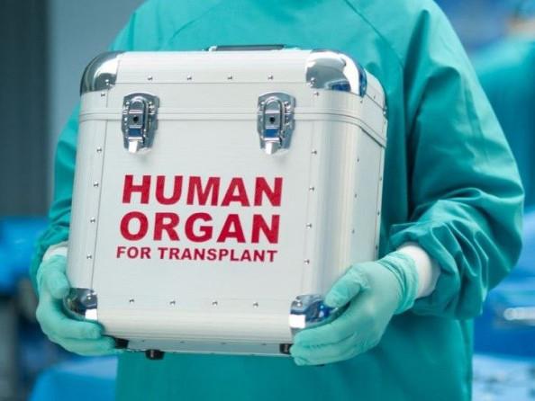 Трансплантація органів  / Фото ілюстративне